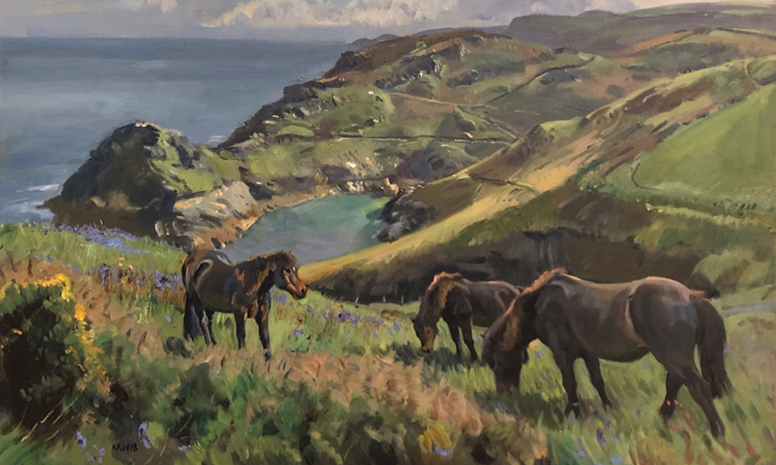CLIFF TOP PONIES IN SPRING