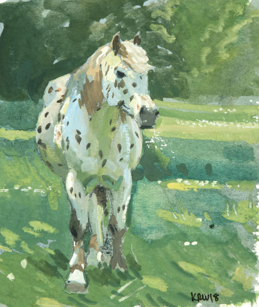 Gouache Horse Study