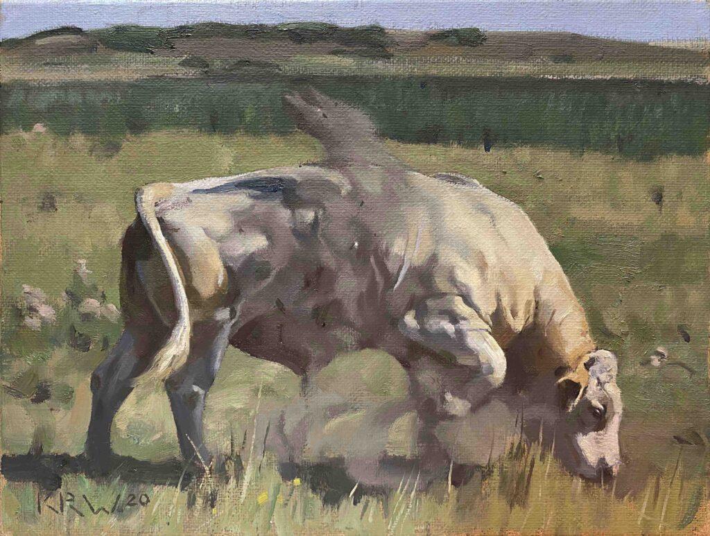 Dusty Bull